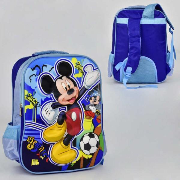 Рюкзак школьный N 00241 (60) 2 кармана