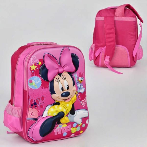 Рюкзак школьный N 00243 (60) 2 кармана