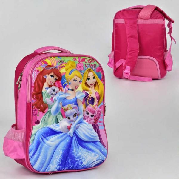 Рюкзак школьный N 00244 (60) 2 кармана