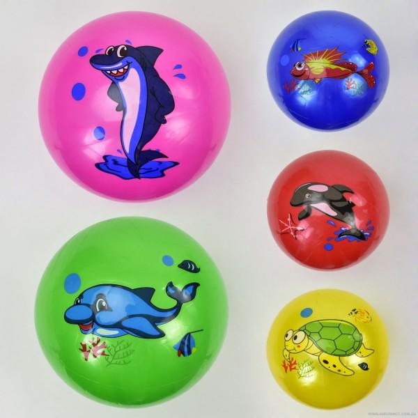 Мяч резиновый F 21983 (400) размер 9``, 60 амм, 5 видов