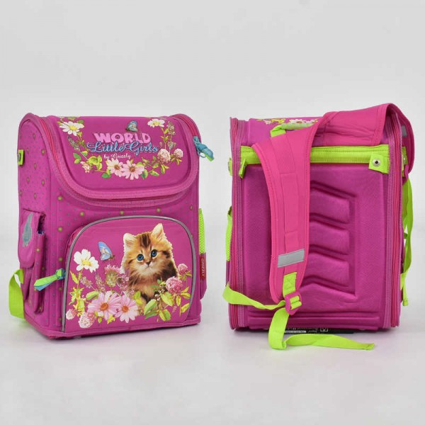 Рюкзак школьный N 00149 (20)