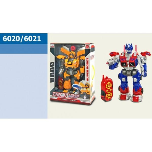 Робот 6020/6021